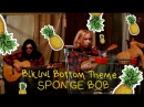 The Pineapple - Bikini Bottom Theme | Sponge Bob |