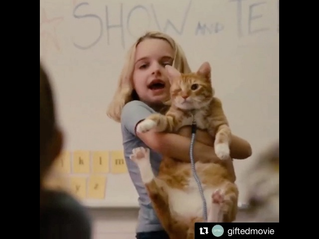 """Mckenna Grace on Instagram: """"She's a genius. She's a rebel. She's a gift. GiftedMovie is NOW PLAYING! ✨"""""""