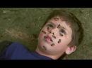 Животные убийцы. Бразилия. Документальный фильм, national geographic, nat geo wild, discovery, bbc.