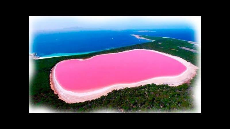 МИНУТКА ПРИРОДЫ Ярко-розовое озеро в Австралии