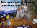 Как правильно задабривать земляного деда Совет от Хамера
