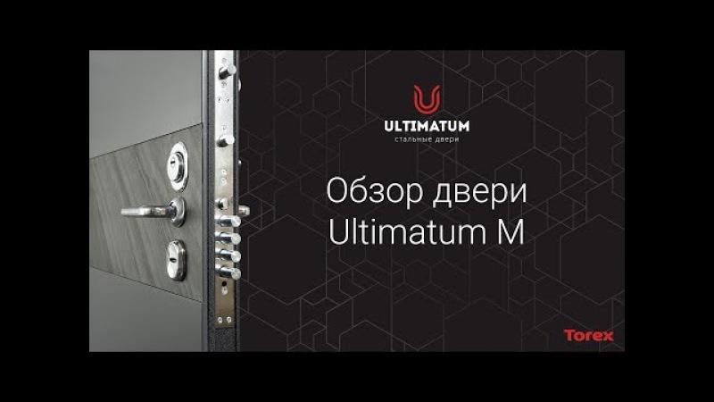 Обзор двери Torex Ultimatum M