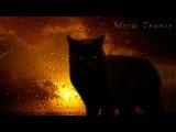 Alex Morph - Sunshine (Nitrous Oxide Remix) HD
