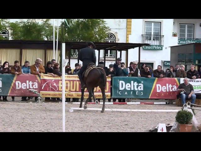 Eduardo Almeida. Xeique.Working Equitation speed test. Golega 2011. winner
