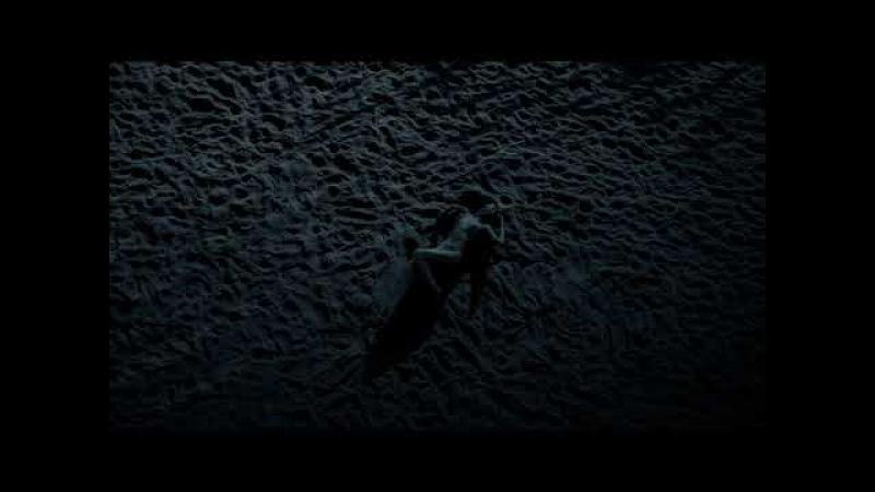 The Seashore of Endless Worlds - Cicada -