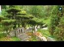 Сад в японском стиле. Сказочные острова в миниатюре FORUMHOUSE