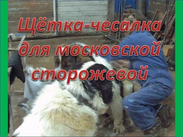 Московская сторожевая и алабай. Щётка чесалка для собаки своими руками