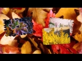 Листья жёлтые над городом кружатся.mp4