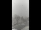 3.02.2018 г,Красоты много не бывает даже когда падает снег в Чимкенте.