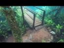 Подводная тропа, образовавшаяся из-за сильных дождей (6 sec)