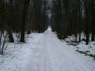 22-04-2018 Последняя лыжня сезона 2017-2018