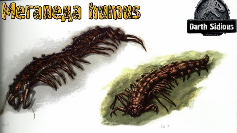 Жизнь Острова Черепа The Life of Skull Island Мегапеда humus