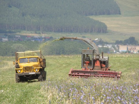 Forage harvester KSK-100A-3 and DON-680M silage КСК-100А-3 и ДОН-680М Заготовка сенажа