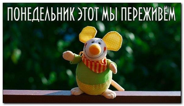 Доброе утро! Пусть понедельник будет легким, а неделя удачной))