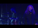 Robert.Plant.and.The.Sensational.Space.Shifters-Live.David.Lynchs.Festival.of.Disruption.2018