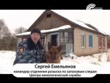 Служебная собака по кличке Граф помогла раскрыть кражу-Сафоново