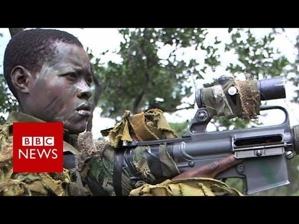 Zimbabwe's women's anti-poaching group protecting elephants - BBC News