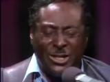 #Albert_King #Stevie_Ray_Vaughan - Blues Jam Session