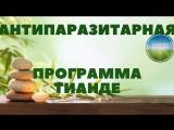 Открытая трансляция интернет-проекта New TianDe Антипаразитарная программа Тианде