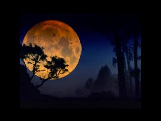 Жизнь чудесна, если где-то песня слышна, Если горит до рассвета луна.