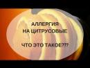 Аллергия на цитрусовые что это Георгий Половцев
