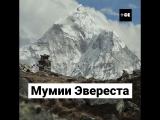 Мумии Эвереста