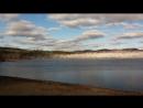 Тысячи белых гусей одновременно взлетают с поверхности озера