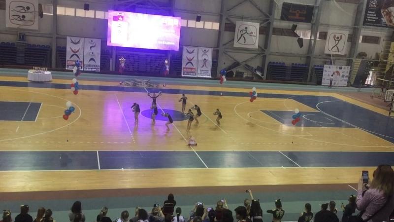 Cheer Performance Kids Paradise
