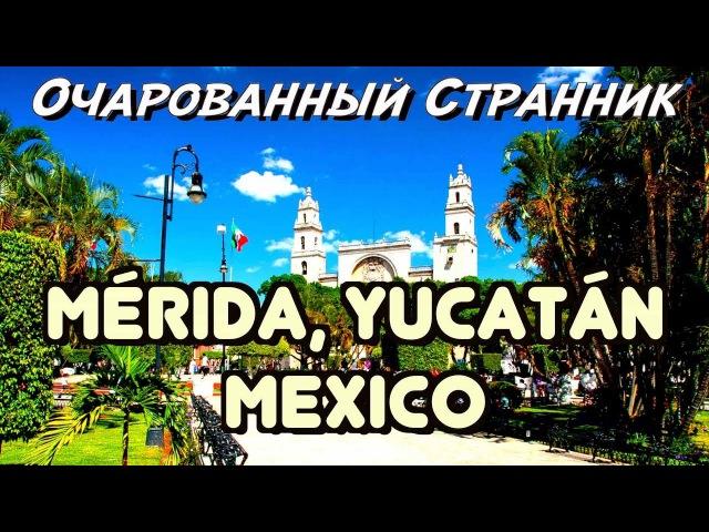 ОС 118 / Мерида, Полуостров Юкатан, Мексика / Merida, Yucatán Peninsula, Mexico