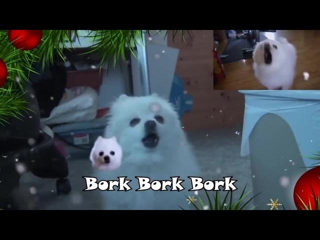GABE THE DOG - Jingle Borks (jingle bells)