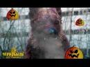 Хэллоуинская считалочка про Чернобыль