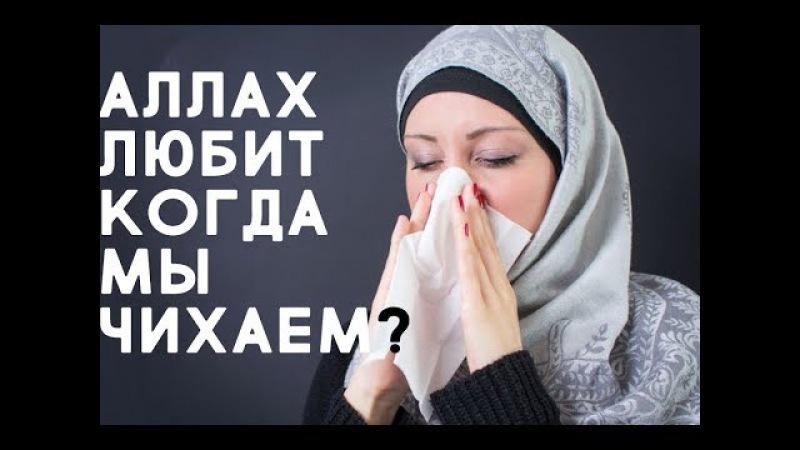 Аллах любит когда мы ЧИХАЕМ?!