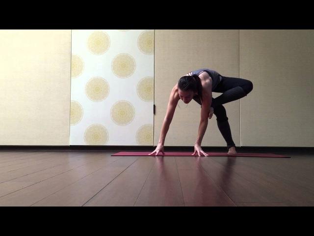 Posture Break Down: Dragonfly/Maksikanagasana.