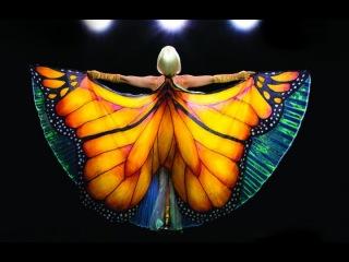 Видео к фильму «Редкая бабочка» (2017): Трейлер (дублированный)