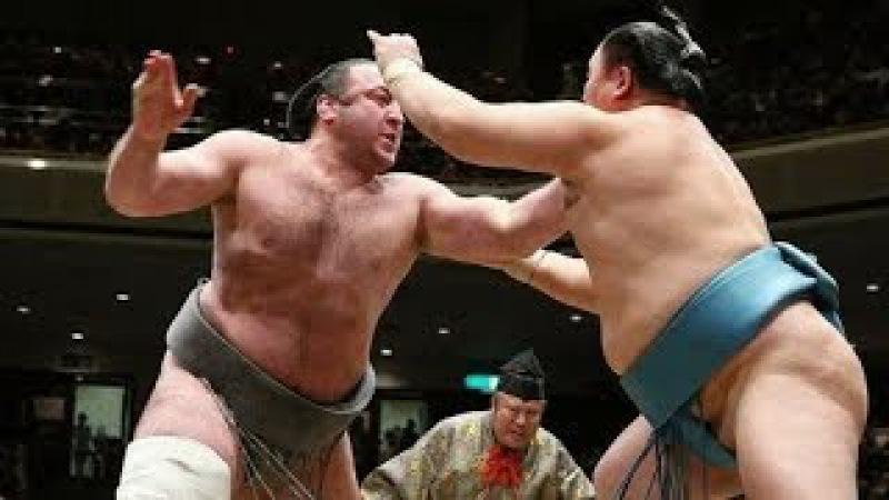 ტოჩინოშინის 15-ვე ბრძოლა იანვრის ბაშოზე | Tochinoshin all 15 bo