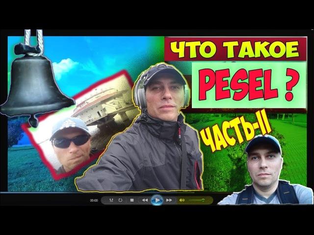 Что Такое PESEL И Как Его Получить. Песель В Польше 2018. Где Взять PESEL. Мeldunek. Часть-2.