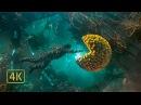Пакман Питер Квилл против Эго 2 часть Жертва Йонду Стражи Галактики 2