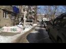 22.01.2018 Голодный сахалинец пытался на глазах у прохожих убить трех щенков