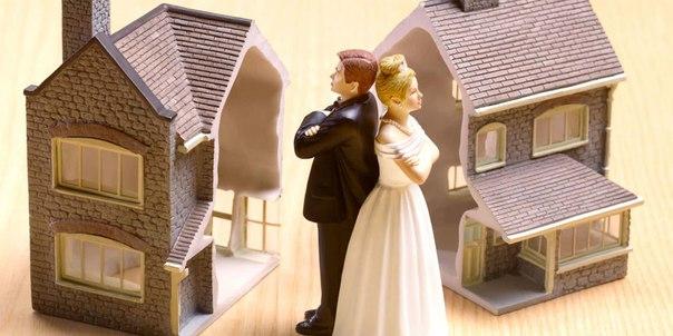 развод и раздел имущества спб полагаю, что