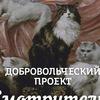Смотрители придворных кошек | Петербург