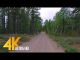 4K Scenic Drive - Hell's Backbone Road, Utah - 2 HRS Road Drive with Relaxing Music