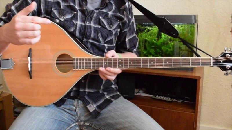 Beginner Irish Bouzouki Lesson Tuning and First Chords