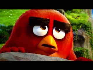 Самый смешной момент из мультфильма-angry birds (2016)