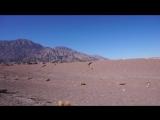 Iranian desert 7