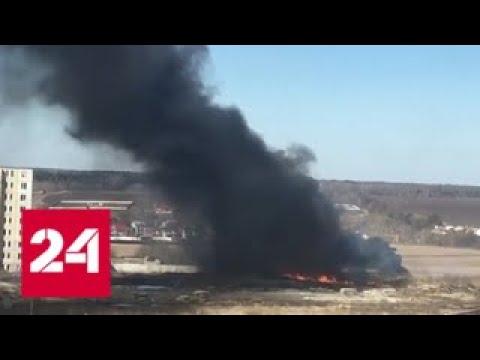 Лосиный остров в дыму: кто и зачем зажигает в заповеднике - Россия 24