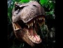 Настя динозавр