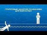 Групповые занятия плаванием для взрослых в бассейне СК