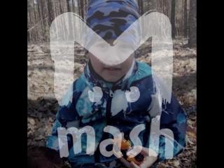 Как 4-летний мальчик спасся один в лесу