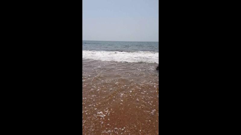 Kalavi beach,Maharashtra