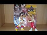 WWE Battle Pack Ultimate Warrior VS Honky Tonk Man Mattel Toy Review